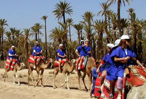 Balade en dromadaire dans la palmeraie de Marrakech
