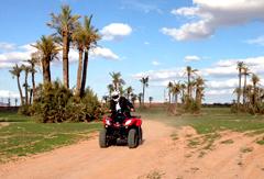 1/2 journée en Quad/Buggy Palmeraie et Désert de Marrakech (à 10min de Marrakech)